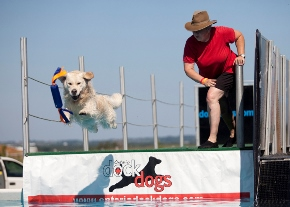 Dog Days of Scugog - Ontario Dock Diving