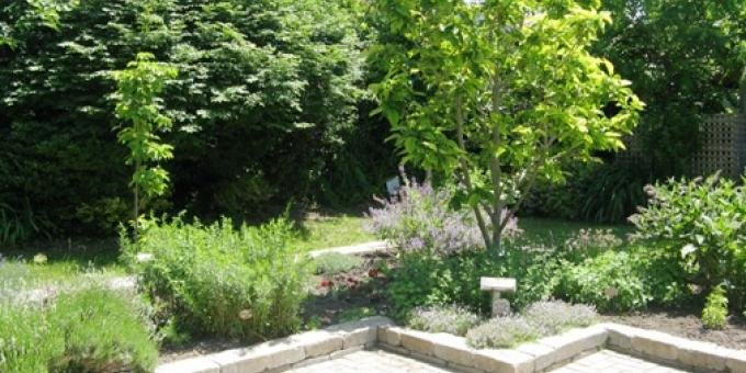 Heritage Herb Garden