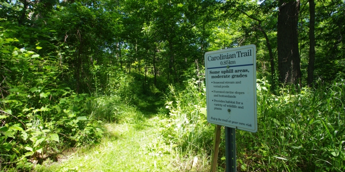 Ask For A Site Map To Help You Explore Our Site's Network Of Groomed Trails