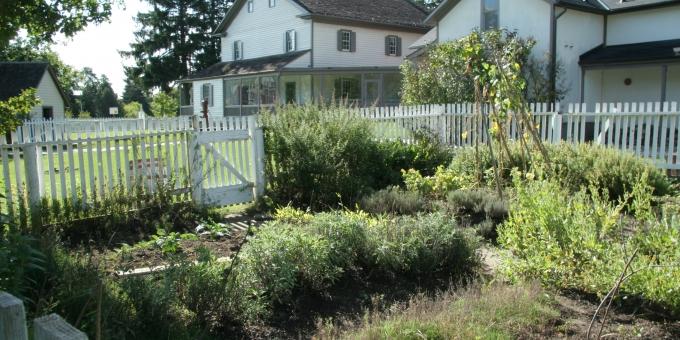 Schneider Haus - Greenspace