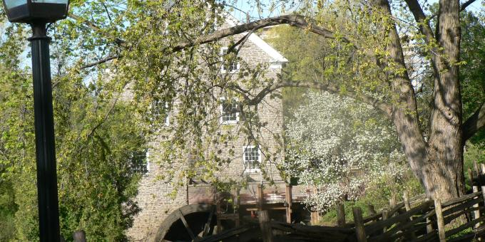 Springtime at the Mill