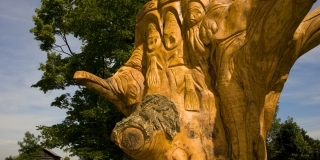 maple tree carved by local sculptor Adam Connolly depicting the history of the Mississaugas of Scugog Island First Nation