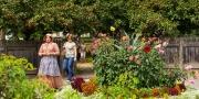 Historic Garden Tours