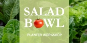 Salad Bowl Planter Workshop